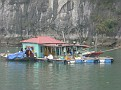 A fish farm in Halong Bay.  This family lives here on this raft house with their floating fish farm!!!
