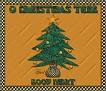 Good Night-gailz-Christmas Tree jp