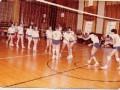 Un match de Volley - Ball