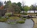 Flatly landscaped garden