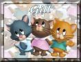 3 KittensGill