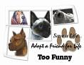 dcd-Too Funny-Adopt a Friend.jpg