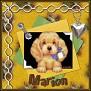 Marion-vi2