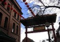 Chinatown in the World 81