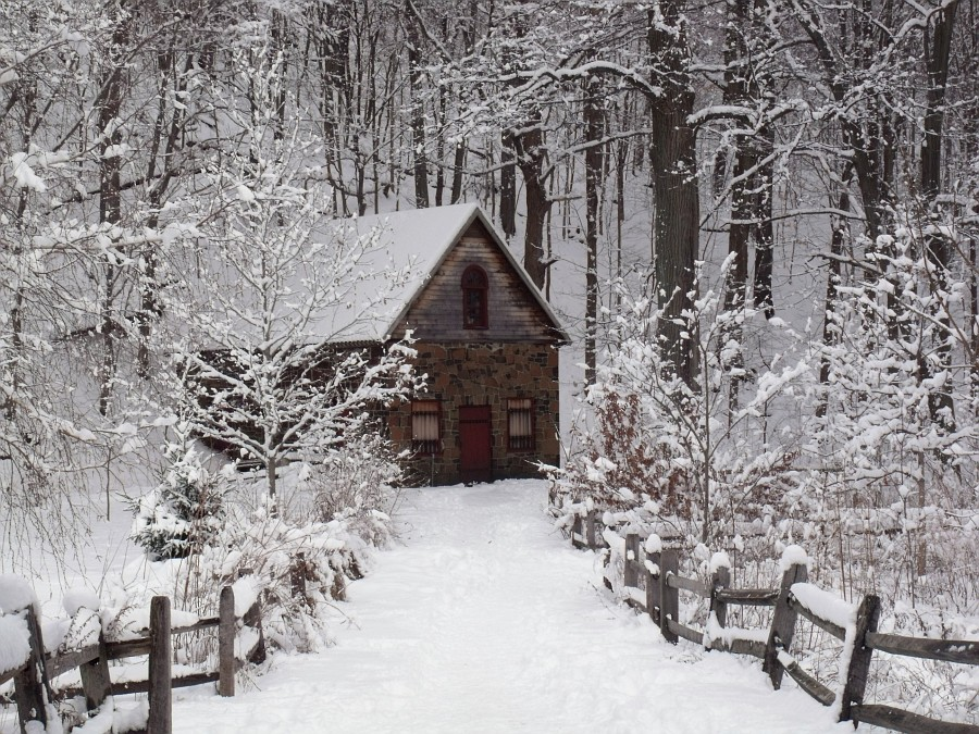 Stone Cottage In The Woods Photo: the stone cotta...