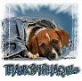 1Thanks4Sharing-blujeanpup