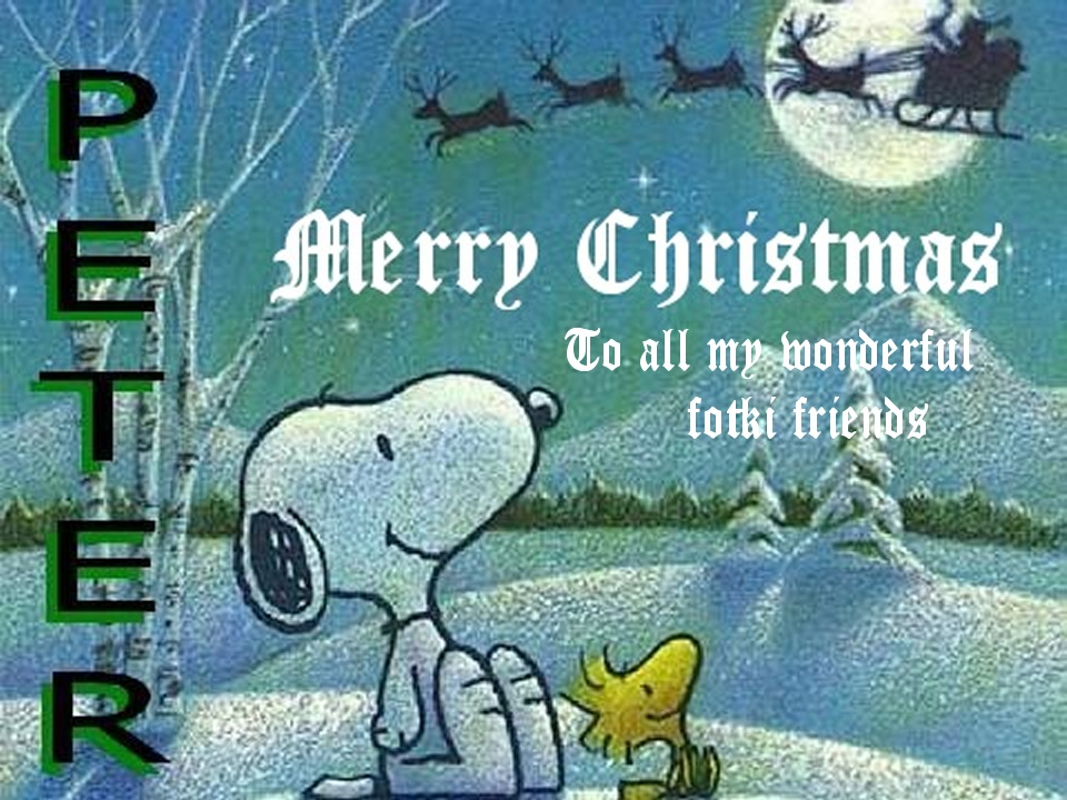 Snoopy By Erin 241205 Christmas 07 002
