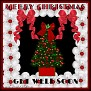 flowerychristmastjcGet Well Soon