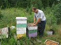 Jersey Cape Beekeepers Meeting for Aug 09  (61)