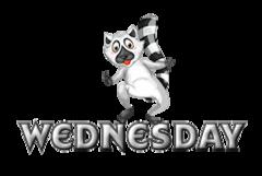DOTW Wednesday - RaccoonStepOnName