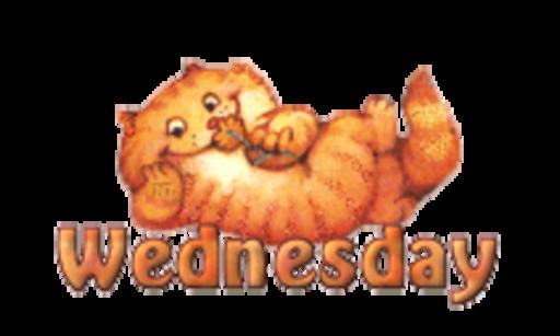 DOTW Wednesday - SpringKitty