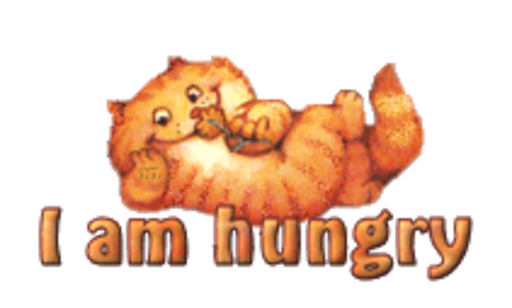 I am hungry - SpringKitty