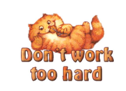 Don't work too hard - SpringKitty