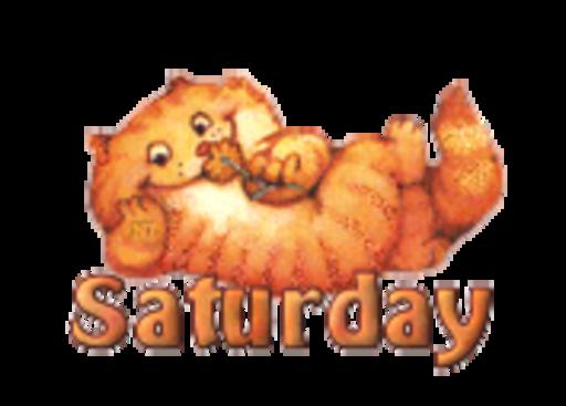 DOTW Saturday - SpringKitty