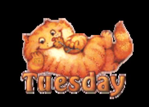 DOTW Tuesday - SpringKitty