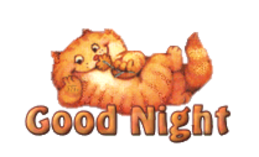 Good Night - SpringKitty