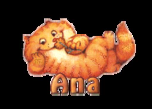 Ana - SpringKitty