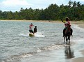 Troy Finally Getting the Hang of Horse Boarding