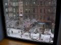 DSCN5398  Newbury Street in snow storm