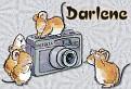 Say Cheesecake Tag4Darlene