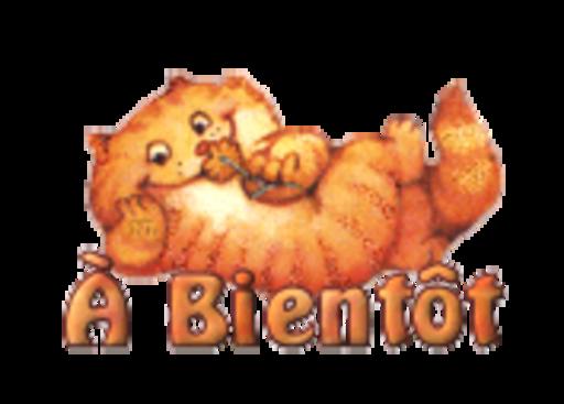 A Bientot - SpringKitty