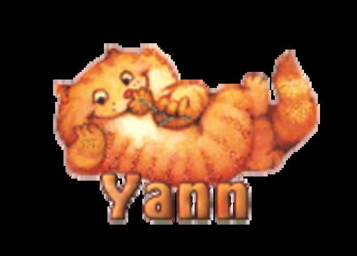 Yann - SpringKitty