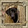 dcd-Good Morning-In The Hay