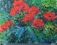 Garden Poppy 2