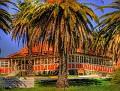 Hermitage Hill Wellington 002