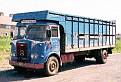 WRS 443L   Atkinson Raider 4x2 rigid livestock truck