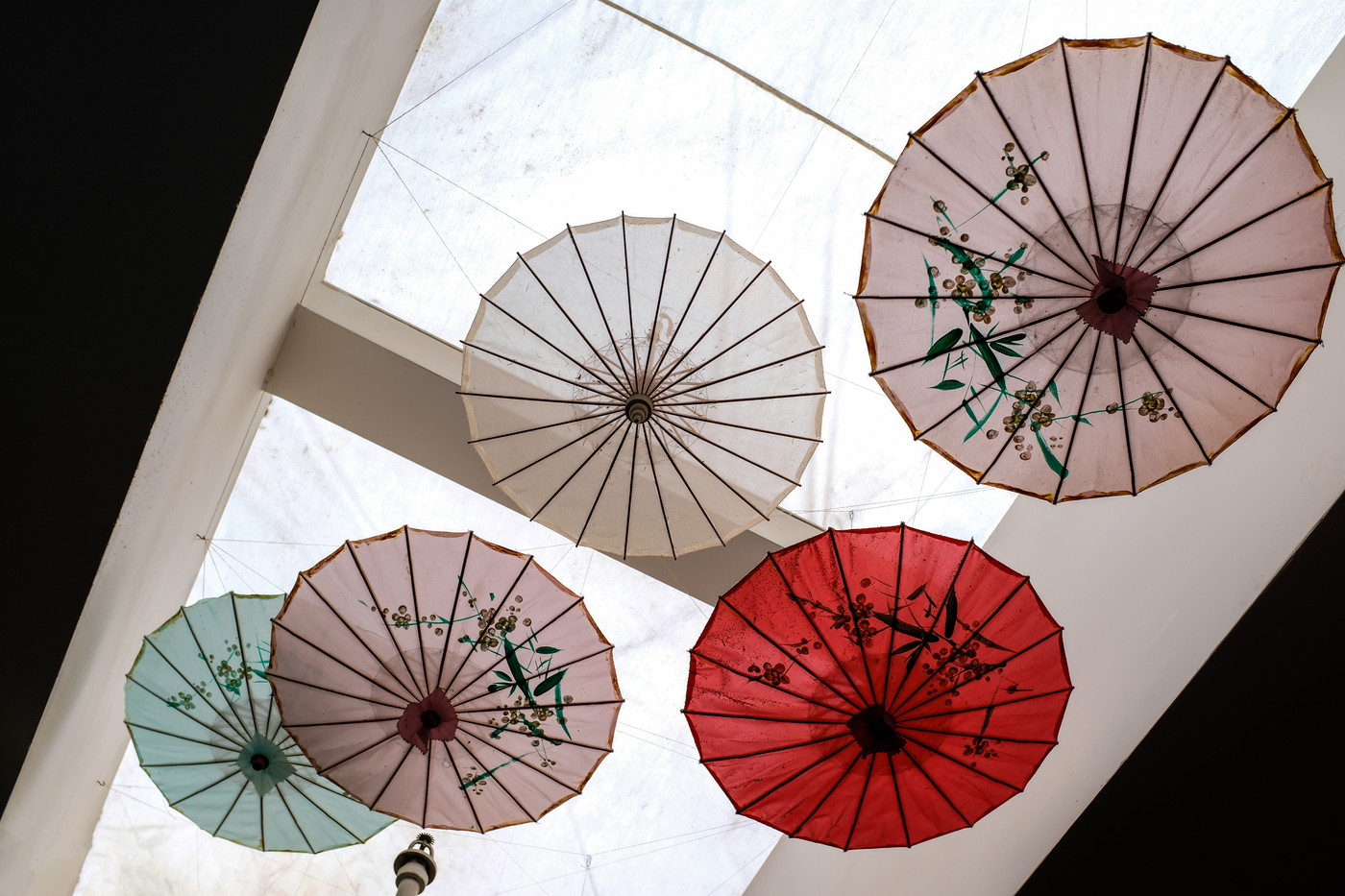 umbrellas at Mother's D