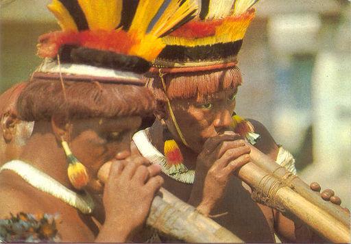 Brazil - Xingu PE