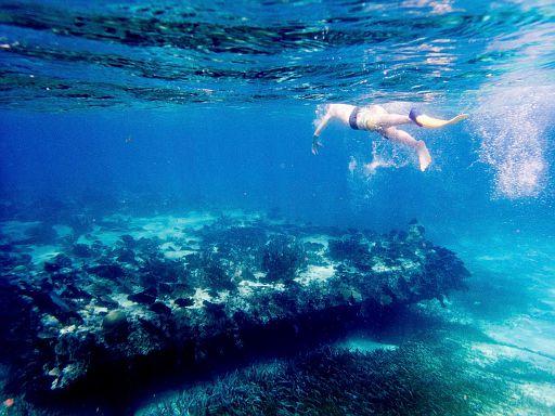 sunken barge reef snorkeling