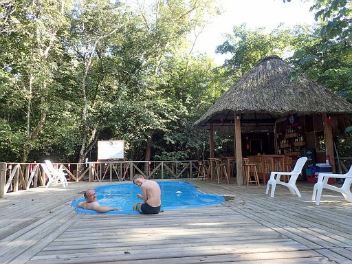 jungle pool and bar