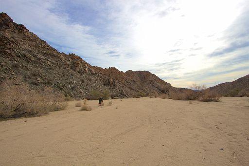 definitely a desert