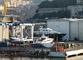 Amico & Co Yard - Sea Shell II