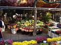 Bloemenmarkt (11)