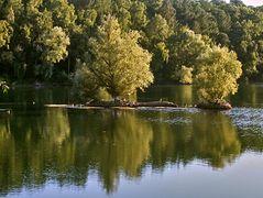 """Naturschutzgebiet """"In den Eichen"""""""