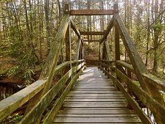 Brücke am Hasselbachstausee