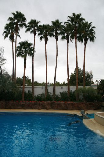 Las Vegas_023.JPG