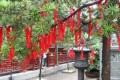 028-shanghai-swiatynia nefrytowego buddy-img 4320