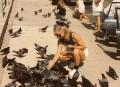 jenny1 july1992