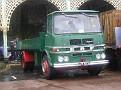 P5020251.JPG