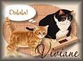 cats-viviane.jpg