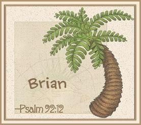 BrianMARMPalm-vi