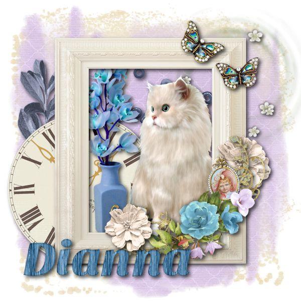 Shabby Cat - Dianna