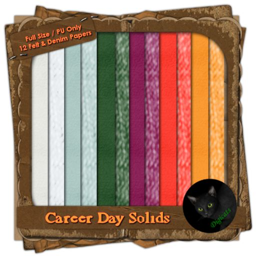 Career Day: Solids (Full)