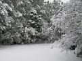 Snow Storm of December 19 2009 (115)