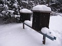 Snow Storm 1-30-2010 (18)