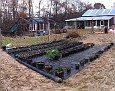 Sunday November 20, 2011. The last of the Beach Plum Potting Project ;-). Moving the 400 pots to here ;-)